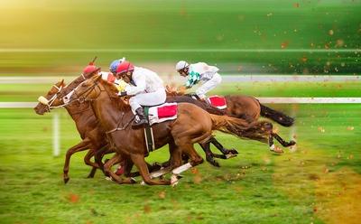 Dead Heat Horse Racing