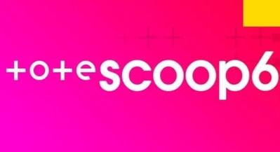 Tote Scoop6 400