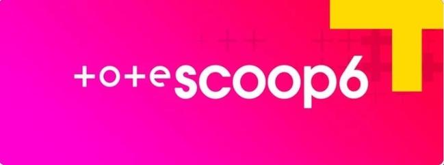 Tote Scoop6