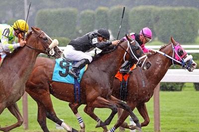 Horse Race Rain