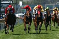 Horse Race Distance