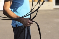 Horse Trainer Holding Reins