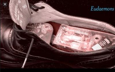 Eudaemons Shoe Computer