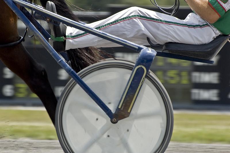 Harness Racing Trotting