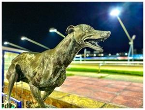 Brighton Greyhound Stadium