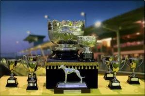 East Anglian Cup Greyhound