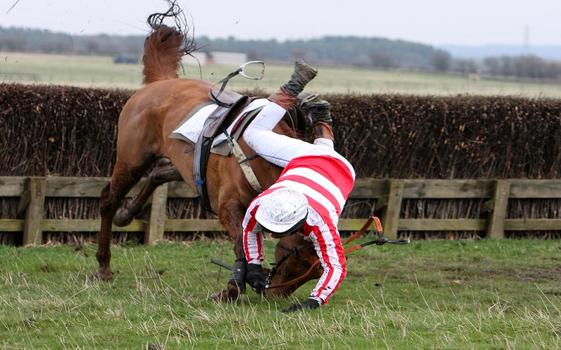 Horse Race Fall at Hedge