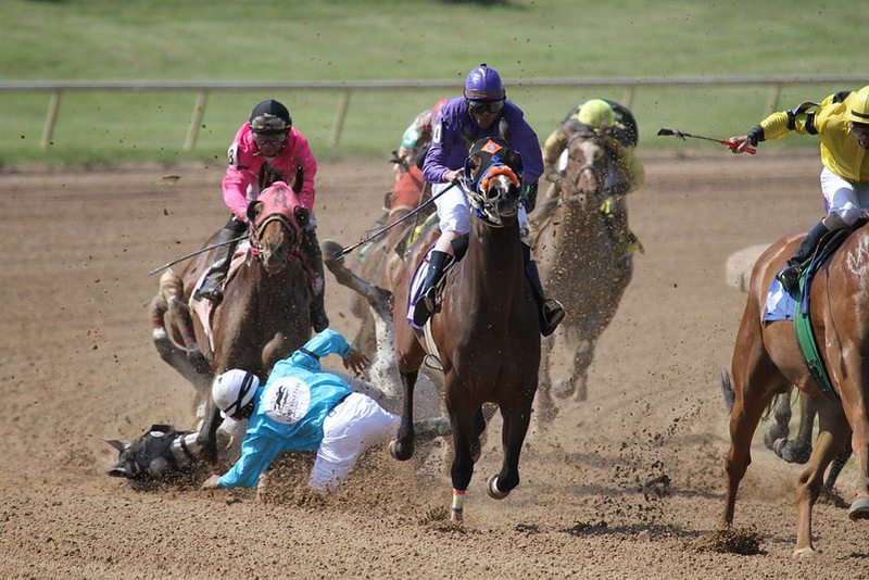 Rider and Horse Fall in Race