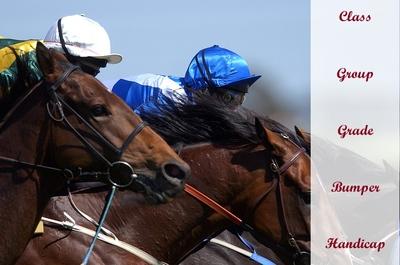 Horse Racing Classifications